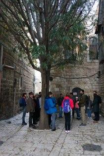 jerusalem old city-03629